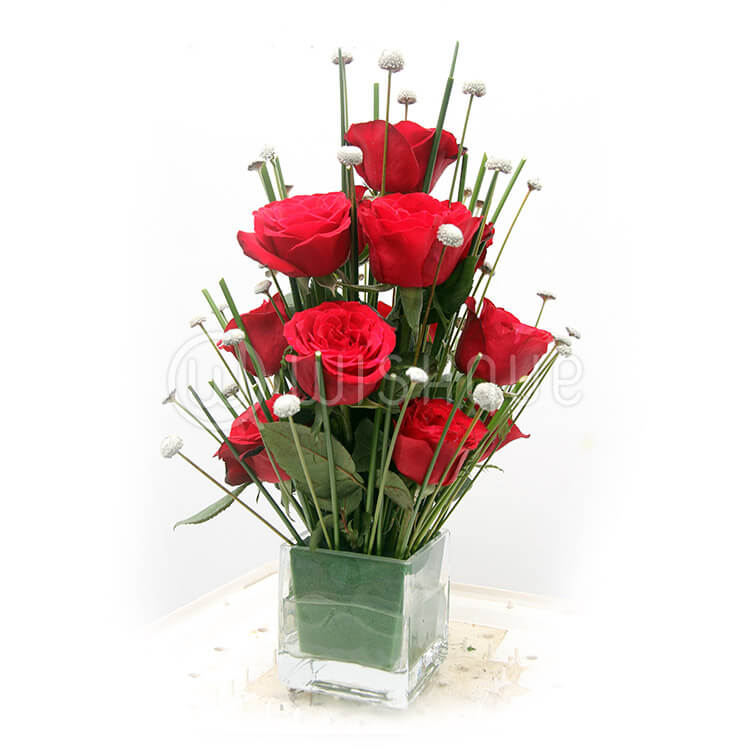 12 Red Roses In A Glass Vase Wishque Sri Lankas Premium Online
