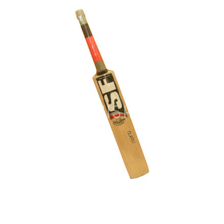 SF Strike Player Cricket Bat  (English Willow)