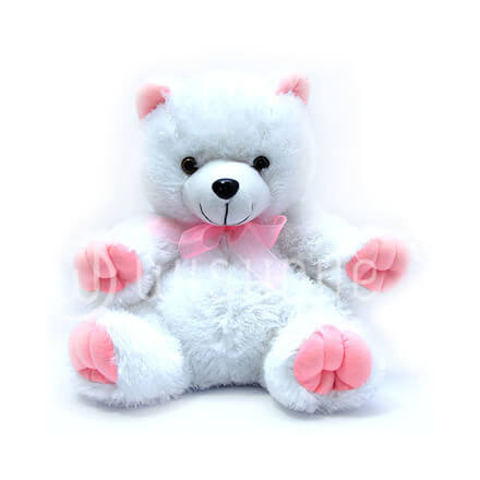 Large Teddy (Pink)