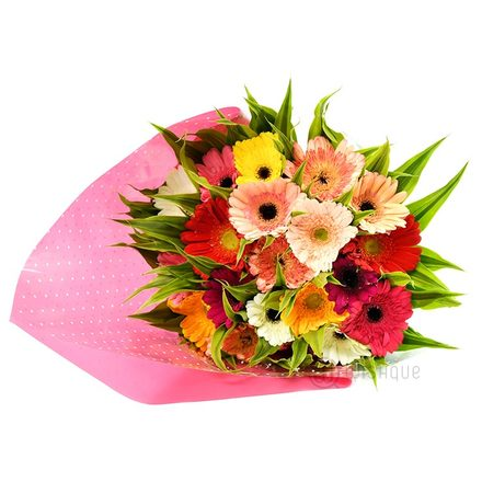 Bouquet Of 20 Mixed Gerbera