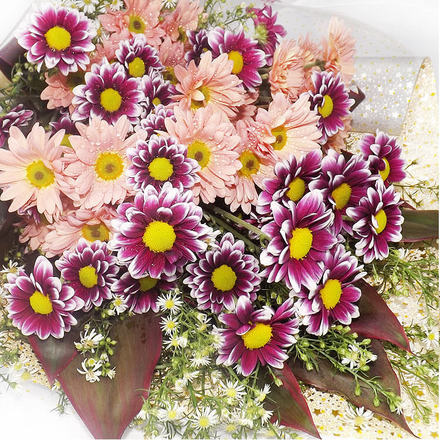 Sheaf of Mixed Chrysanthemums