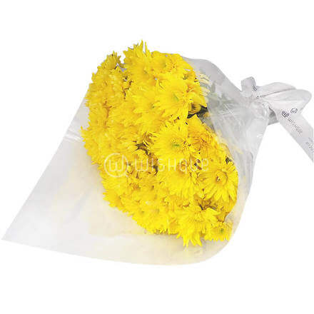 Bouquet of 20 Yellow Arashi Chrysanthemums