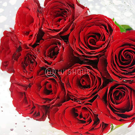 Now and Forever 12 Roses Bouquet