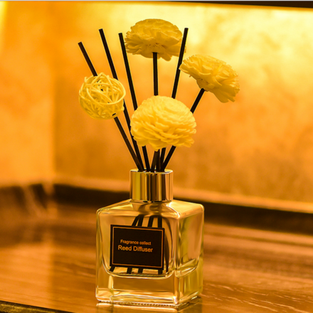 Home Fragrance Aromatherapy Reed Diffuser