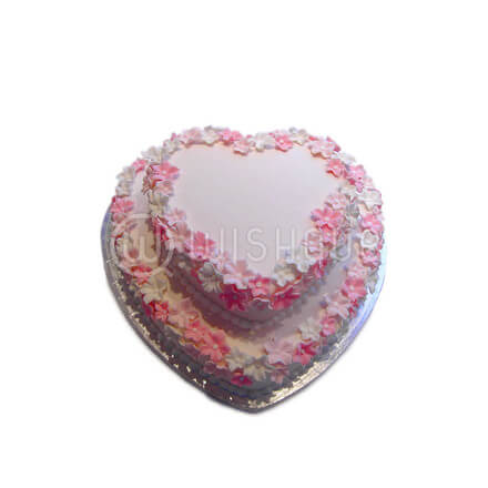 Two Layer Heart Cake